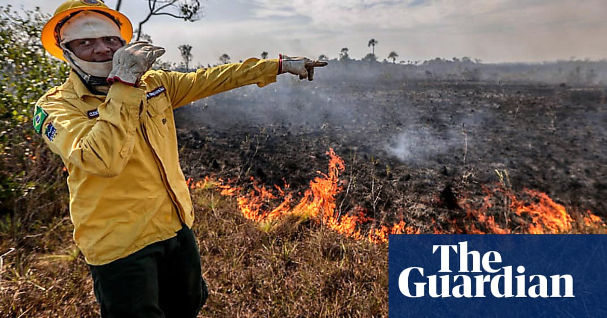 Many are responsible for Brazil's Amazon fires   Letters