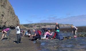 Fossil hunting North York Moors coastline