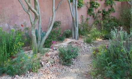 Sarah Price's garden, with its clever use of gravel.
