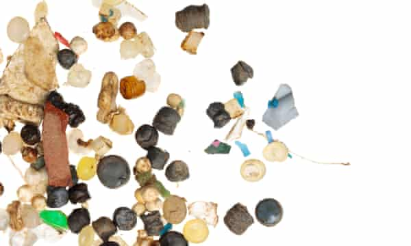 Plastic samples found in the River Mersey.