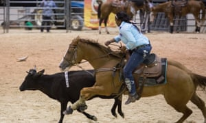 A cowgirl competes in the Ladies Steer Undecorating