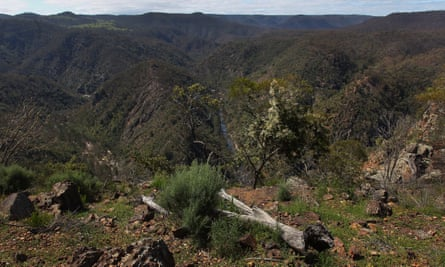 A view from the Guula Ngurra national park