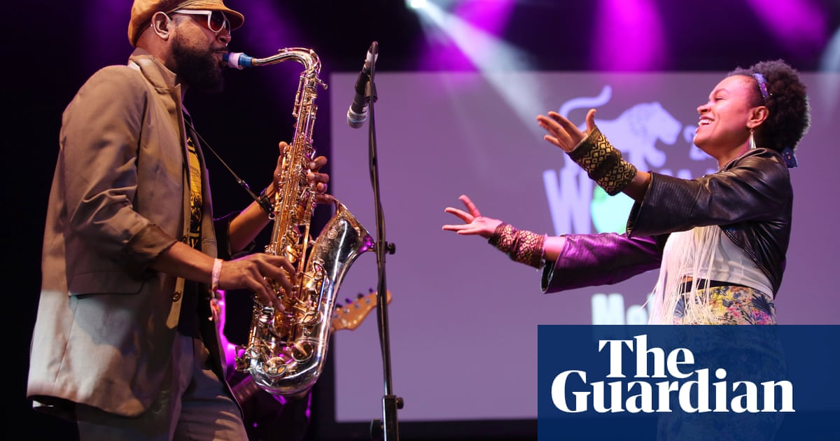 Womad cancelled as organisers blame government