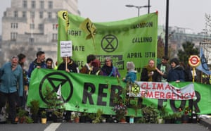 Protesters wield banners and plants on Waterloo Bridge