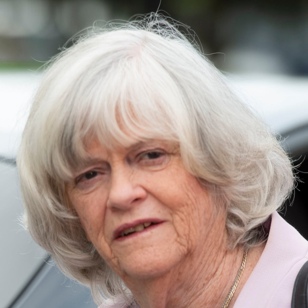 Ann Widdecombe one-woman show pulled after gay therapy remark   Ann  Widdecombe   The Guardian