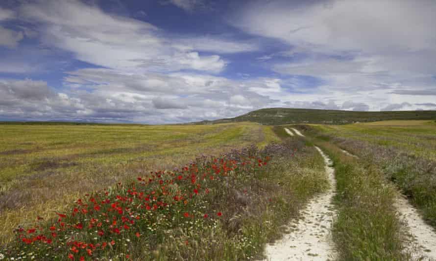 The Camino de Santiago, Spain