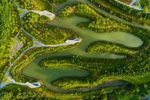 Sanya City, ChinaDeep Form of Designed Nature: Sanya Mangrove Park by Turenscape