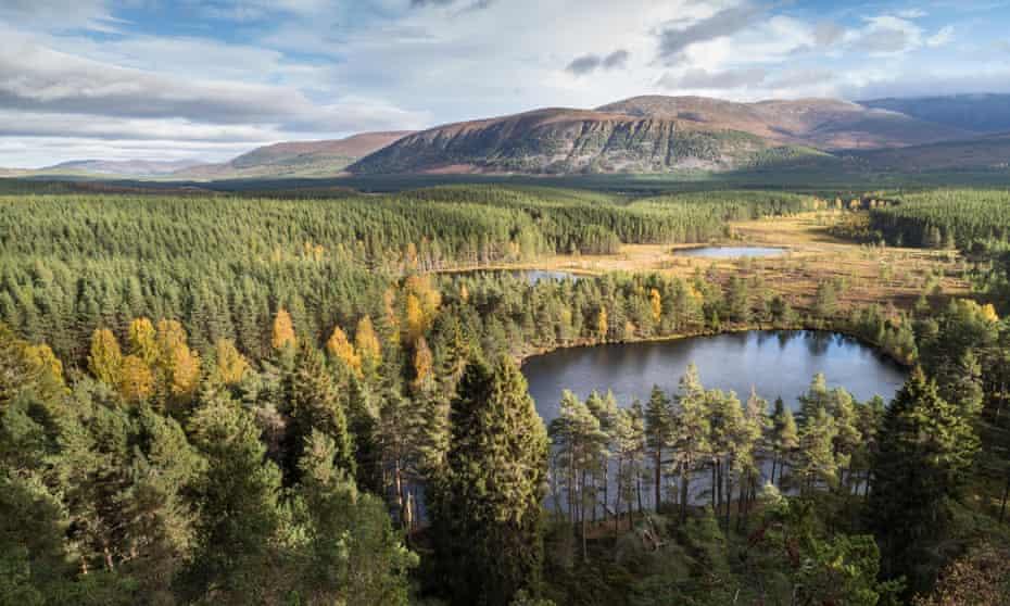 Uath Lochans in the Cairngorms.