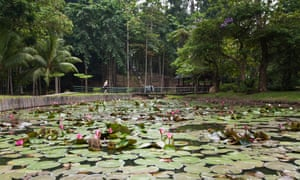 Peace Pond at entrance to Sandakan Memorial Park.