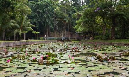 Peace Pond at entrance to Sandakan Memorial Park.
