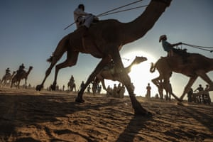 Gaza city, GazaJockeys compete in a camel race on the runway of Gaza Airport which was completely destroyed by Israeli attacks.