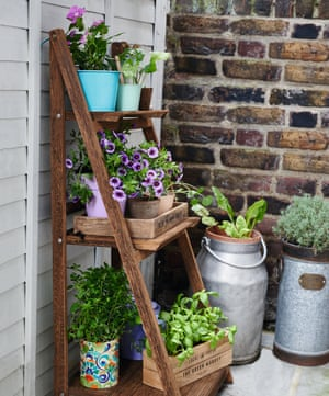 Plants in pots and milk churns