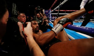David Haye looks dazed after being knocked out of the ring in the 11th round.