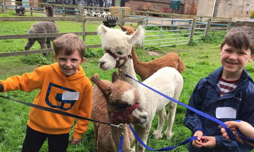 Flynn and Callum at Farm Club