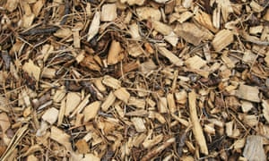 how to turn wood chips into a great compost heap alys fowler