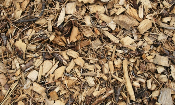 How to turn wood chips into a great compost heap | Alys