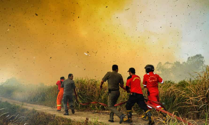 Fire fighters rush to douse a fire on a sago plantation caused by hot, dry weather in Meranti Islands, Indonesia.