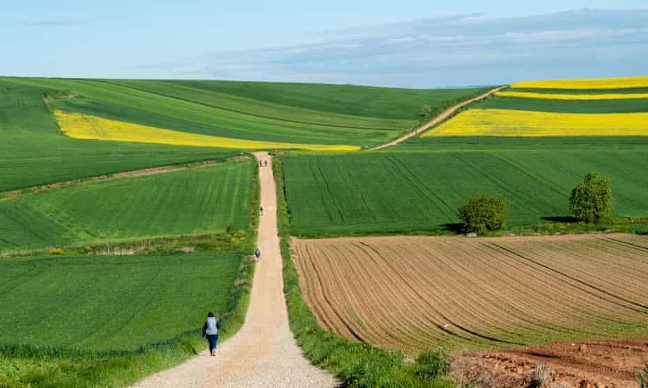 Walkers on road through fields on the Camino de Santiago in Spain