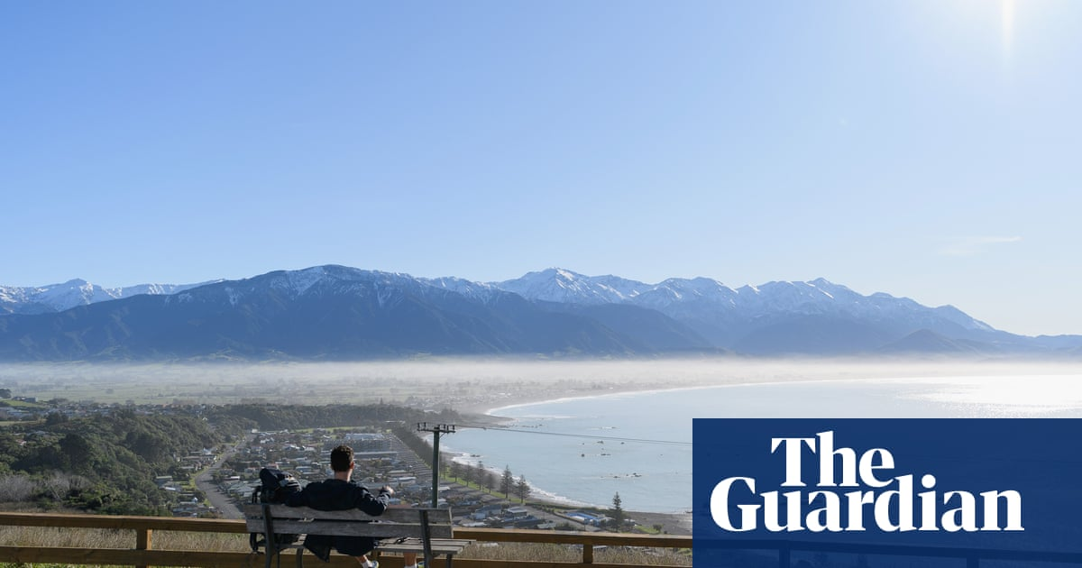 New Zealand should take phased approach to border reopening, experts advise