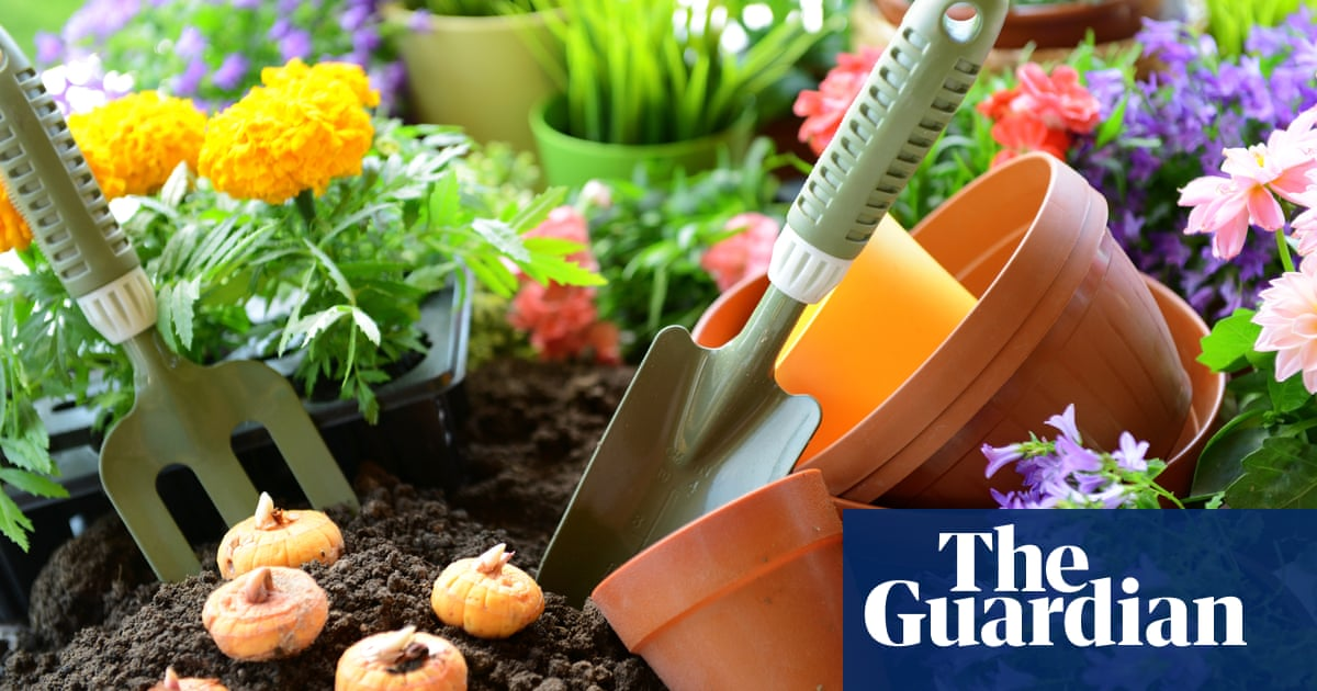Gardening trend that bloomed during the pandemic is here to stay
