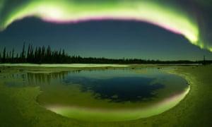 The aurora borealis streaking overhead at Grosbeak Lake, Wood Buffalo National Park