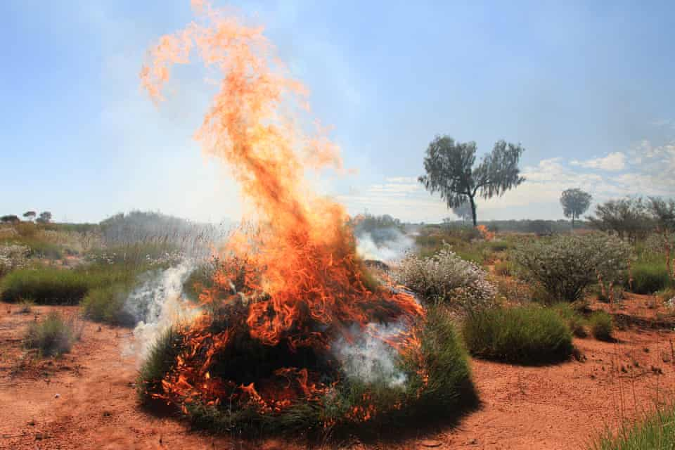 Spinifex burning in the Katiti Petermann Indigenous protected area, in the remote desert country near the Western Australia and Northern Territory border.