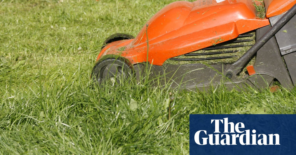 Homebase has kicked my Flymo order into the long grass