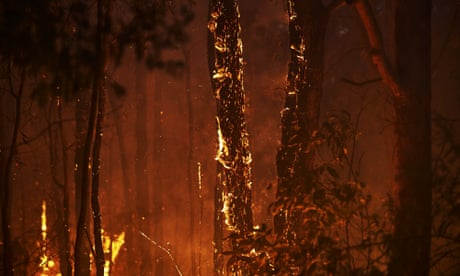 Australian man accused of deliberately lighting out-of-control fire to protect cannabis crop