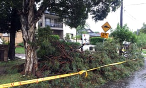 Drive ways block by the fallen trees in the residential area of the western Sydney following an over night strong storm on April 21, 2015. Australia's biggest city Sydney and surrounding areas were lashed by wild weather with trees felled, thousands of homes without power, schools shut and huge sea swells that hampered cruise ship movements.