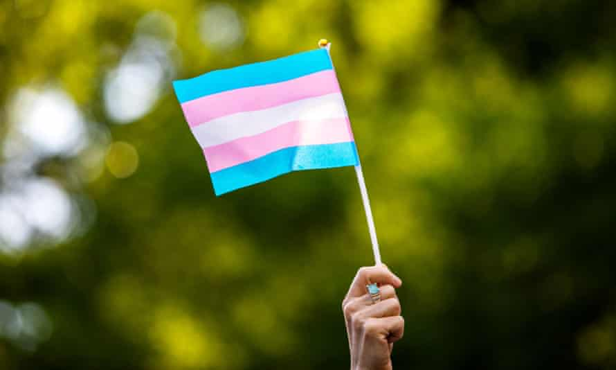 Marjorie Taylor Green responded to the Democratic congresswoman Marie Newman's transgender flag with a sign saying 'There are TWO genders: Male & Female. Trust The Science!'
