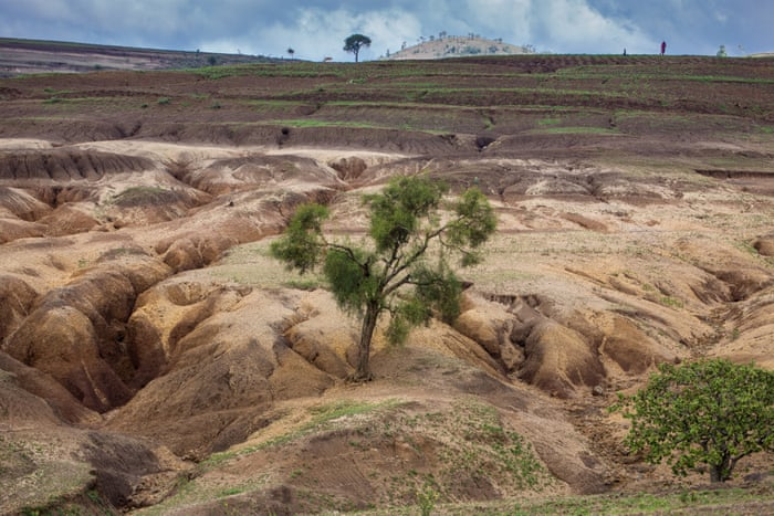 Soil erosion in Tanzania – in pictures | Environment | The