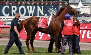 Red Cadeaux, put down after injuries sustained during the Melbourne Cup.