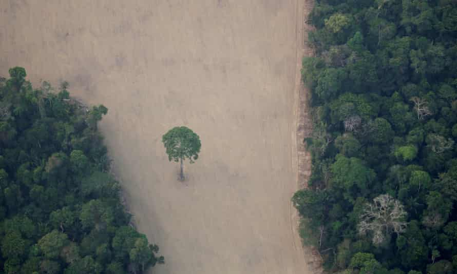 An aerial view shows a deforested plot of the Amazon near Porto Velho, Rondônia state, Brazil in 2019