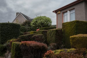 A selection of topiary in Craigleith.