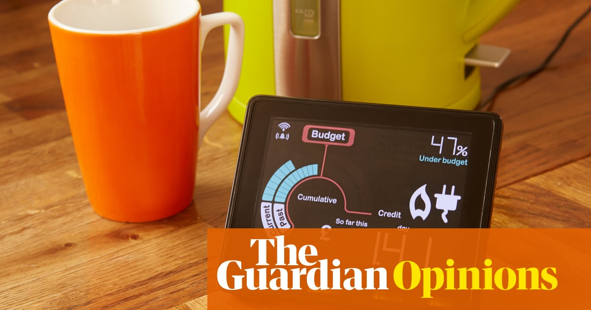Is your smart meter spying on you? | Money | The Guardian