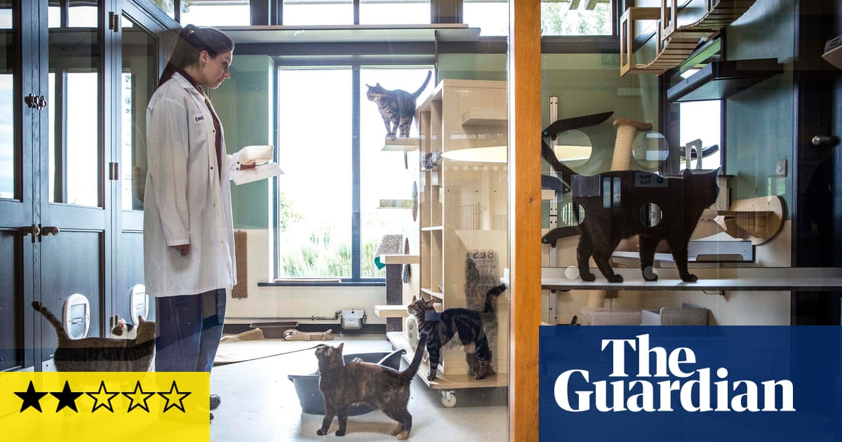 Britain's Giant Pet Food Factory review – catty in all the wrong ways