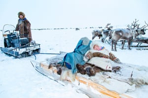 Sledges are an important aspect of the Nenets way of life. They are used for all aspects of travel and migration, and for storage. Two of the sledges are designated for food. Like portable refrigerators, they are used to store frozen meat, bread, butter and other staples