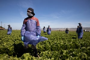 Farm laborers from Fresh Harvest working with an H-2A visa maintain a safe distance as a machine is moved in Greenfield, California, on 27 April