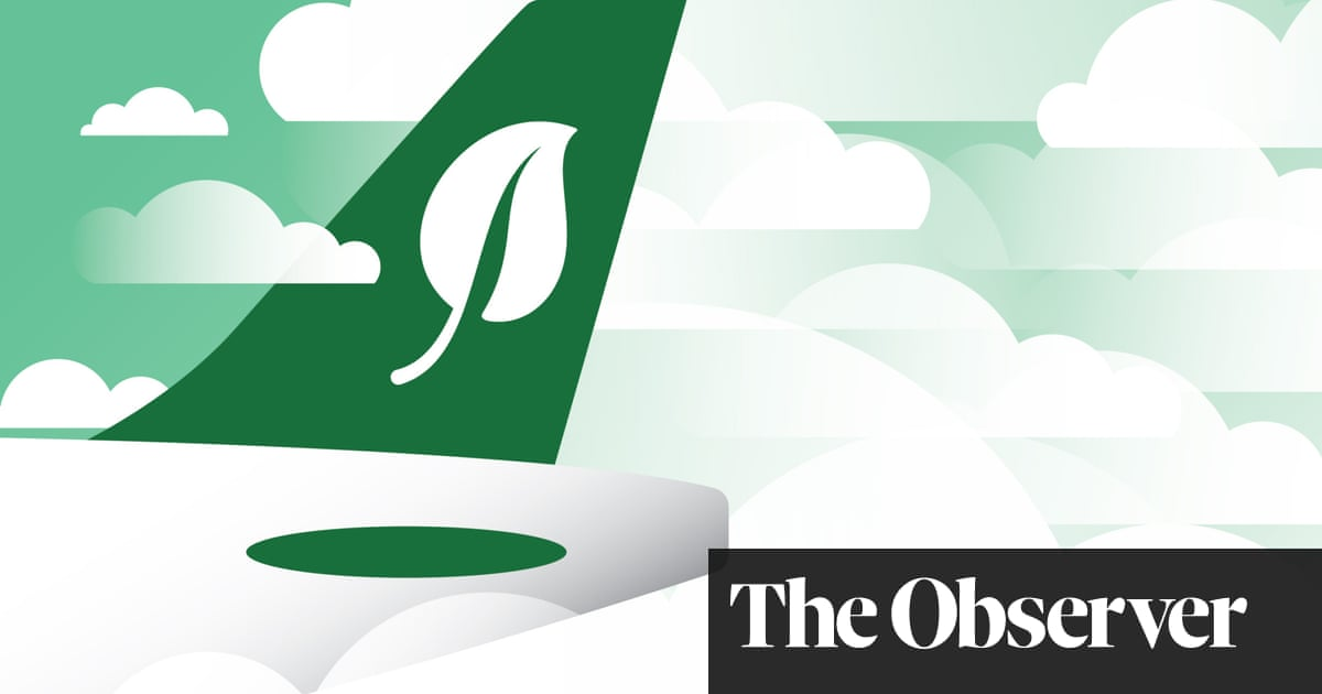 The six problems aviation must fix to hit net zero