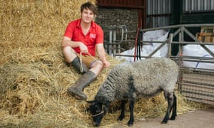 Ryan Clements, an 18-year-old apprentice at Greenmeadow Community Farm in Cwmbran, south Wales. 'If I hadn't come here, I'd probably be in a jail cell somewhere.'