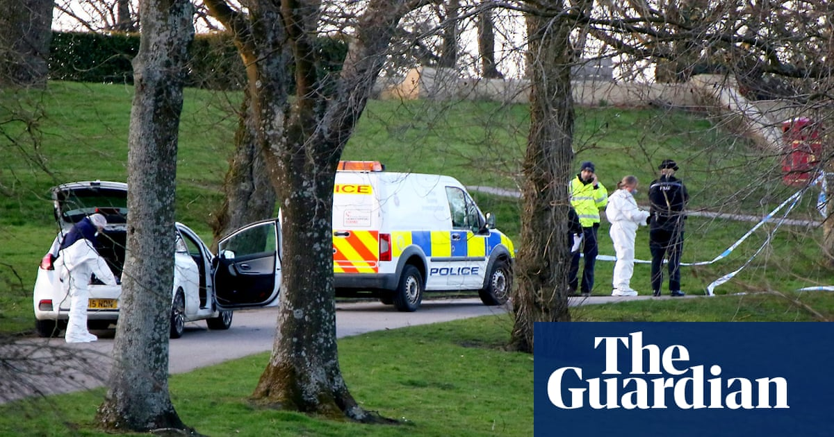 Girl, seven, stabbed to death by woman in Bolton park | UK news | The Guardian