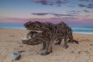 A driftwood creature on the sand