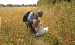 Catching butterflies at Winterbourne Downs, Wiltshire