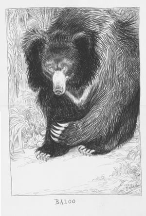 UK Children's Laureate 2015-2017 Chris Riddell paid homage to Kipling's beloved, bumbling bear Baloo – a character he says inspired one of his own, The Banderbear. 'The Banderbear protects Twig in the Deepwoods just as Baloo watches over Mowgli in the jungle.'