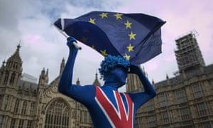 EU campaigner outside parliament