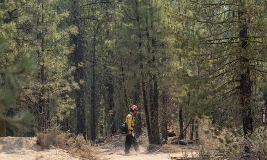 A firefighter searches for hotspots while mopping up the north-east side of the Bootleg fire near Sprague River, Oregon, on Wednesday.