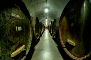 Roll out the barrel … huge oak casks in the Grand Cellar under the Changyu wine museum. Changyu Pioneer Wine, started in 1892, is China's oldest and largest winery.