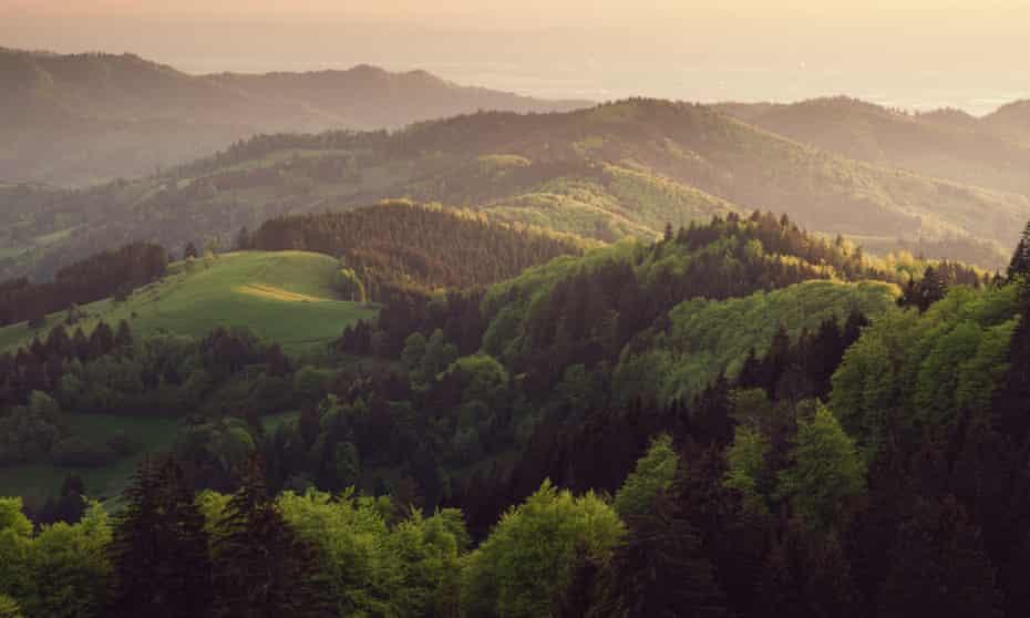 Last warm sunbeams touching black forest at Freiburg.