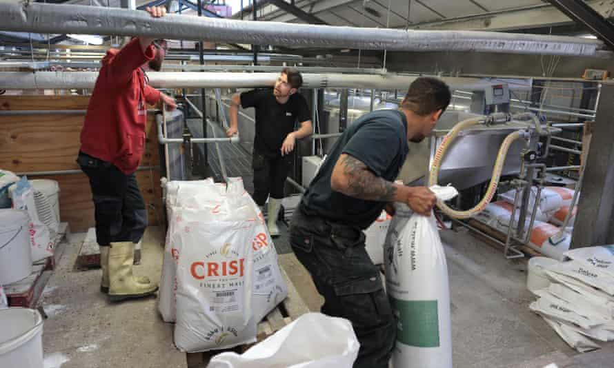 کارکنان Gipsy Hill Brewery در نوروود ، جنوب لندن ، برای تأمین تقاضا و ضرب الاجل آبجو جدید کار می کنند.