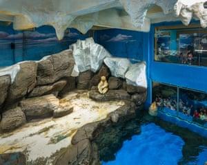 Wuhan Haichang Polar Ocean World, China (2015)